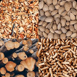 renovables biomasa policombustible