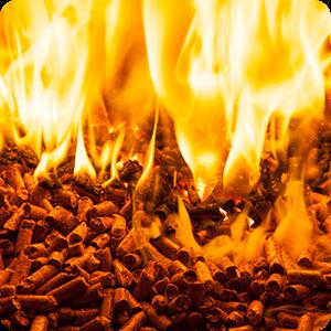 servicios biomasa